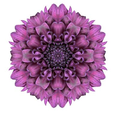 Mandalas tibetanos color violeta