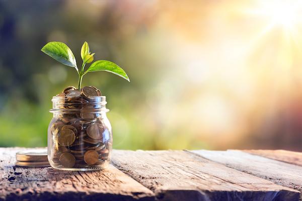 feng shui para el dinero y la prosperidad
