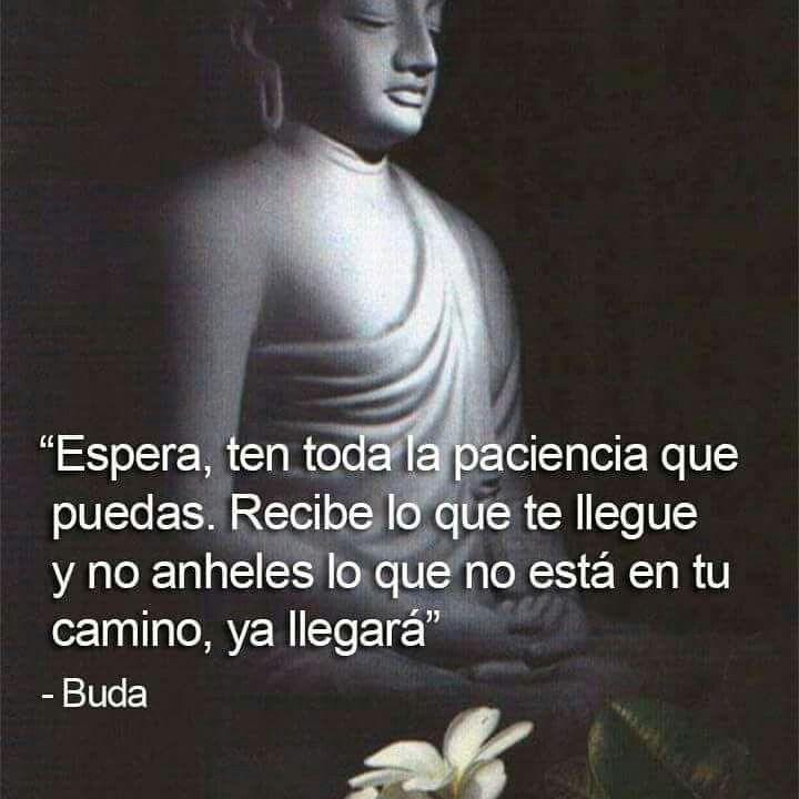 Frases de Buda sobre el camino