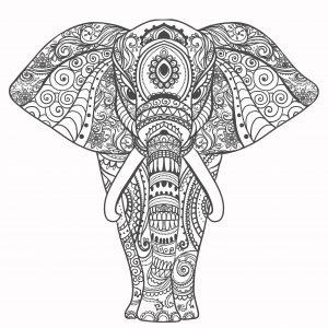 Mandalas de elefante