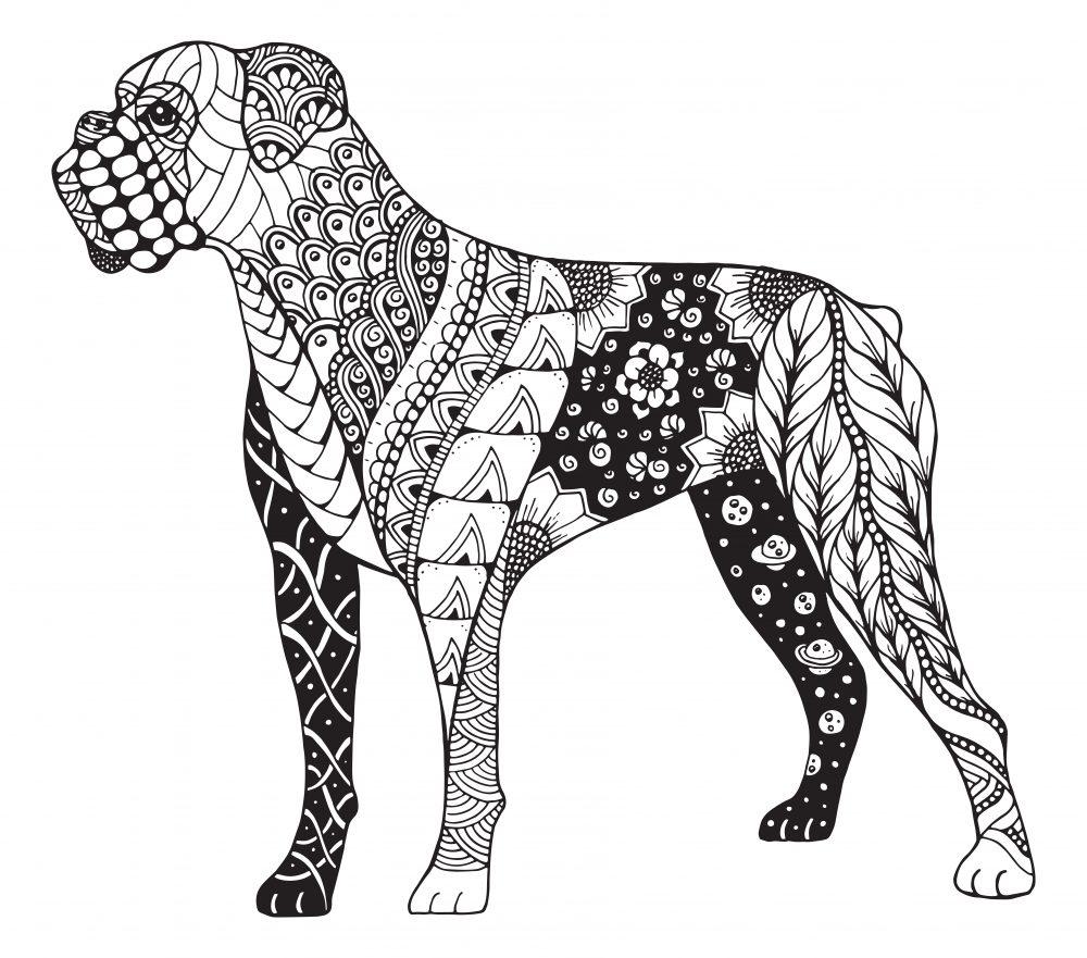 Mandalas De Perros Para Colorear Debudanet