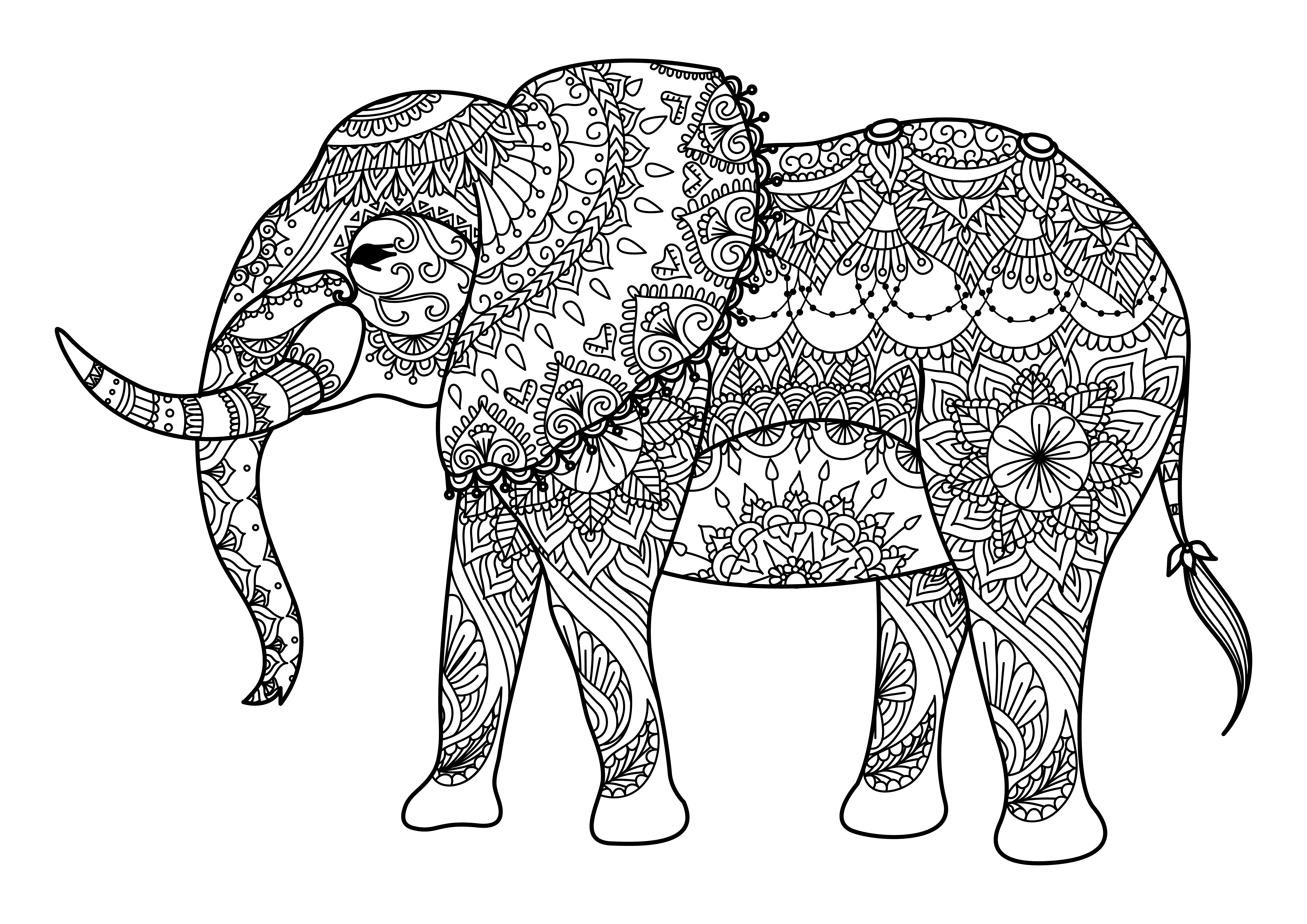 Los mejores mandalas de elefantes debuda net for Elephant mandala coloring pages