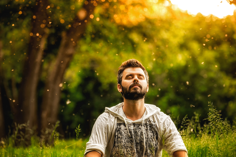 filosofía de las frases zen