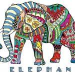 mandalas de elefantes