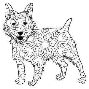 mandalas perros