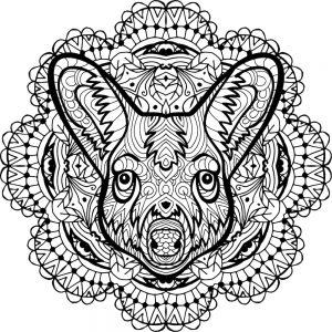 pintar Mandalas de perros