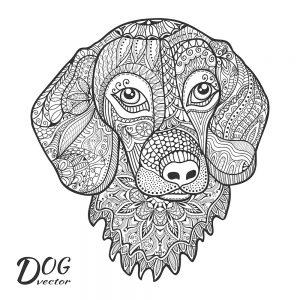 pintar mandalas perros