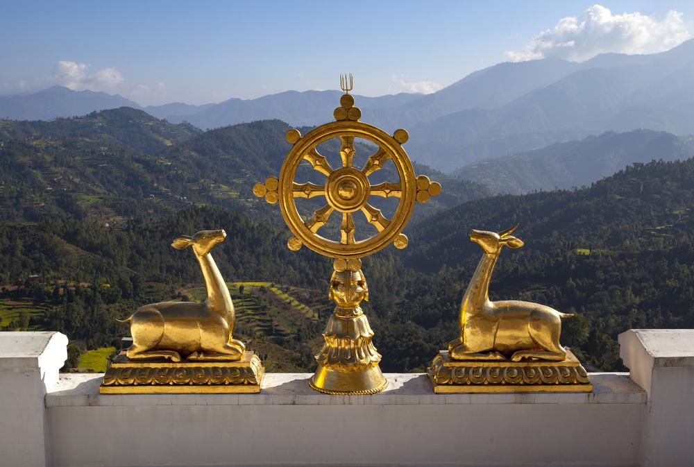 principios del budismo zen