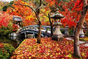 jardin zen en casa