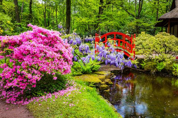 jardines japoneses zen - Jardines Japoneses