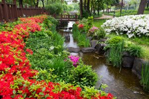 jardines zen con agua