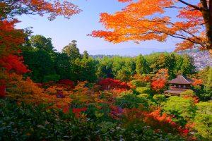 jardines zen en terrazas