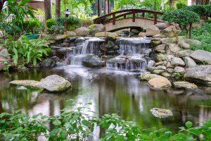 jardines zen exterior